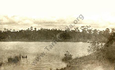 Tarnagulla Reservoir c 1920