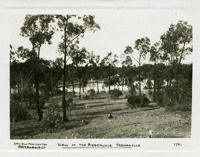 View of the Reservoir, Tarnagulla. 1909